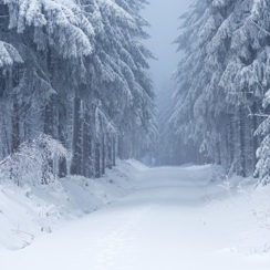 Jak przygotować się do zimy?